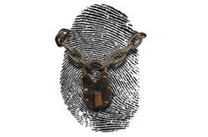 Key Things to Know About Biometric Fingerprint Time Clocks