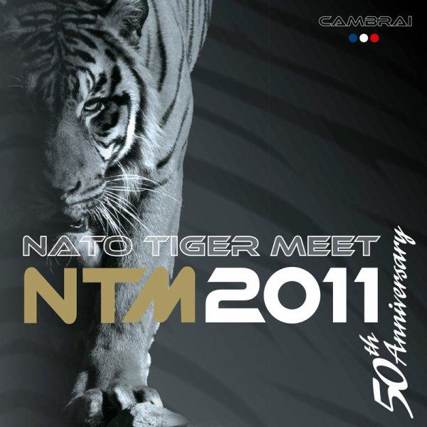 TIGER TIGER TIGER !!!!