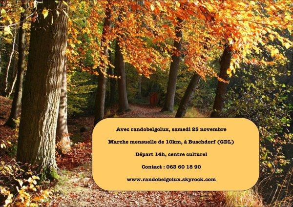 Buschdorf en novembre