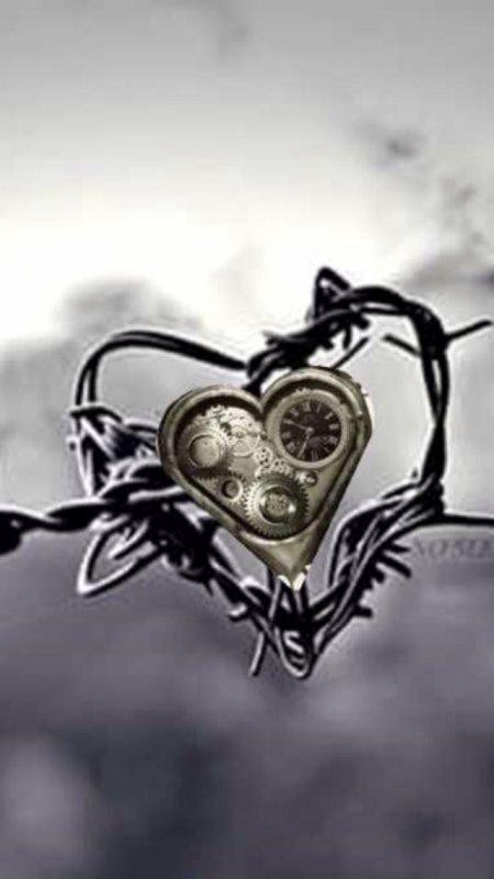 On peu parfois se blesser quand l'amour défi  le temps ...mais chaque épine en vaut le coup ... Suffit juste y croire ...