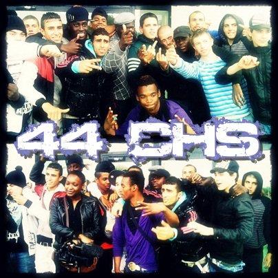 44CHS