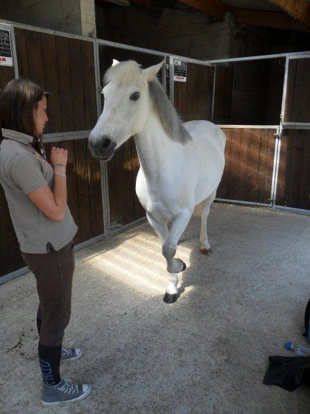 Etre heureux à cheval, c'est être entre ciel et terre, à une hauteur qui n'existe pas.