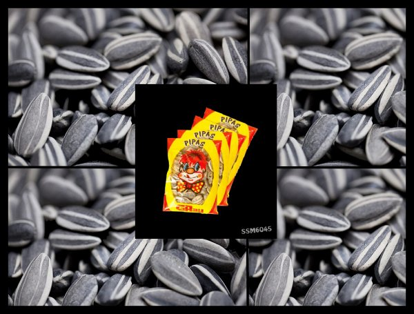 Les Gourmandises de notre Enfance - Bonbons Nounours - Graines de Tournesol