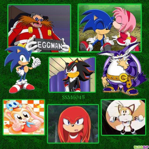 Ma création sur Sonic le Dessin Animé