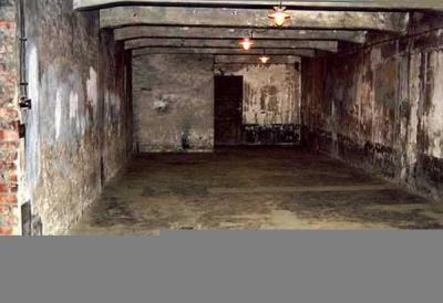 Chambre gaz la seconde guerre mondial for Auschwitz chambre a gaz