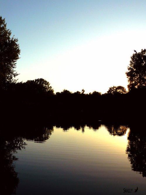 Lac de l'Arrou à Blois