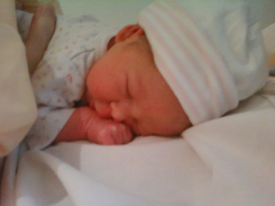 notre puce est née le 15/10/2010