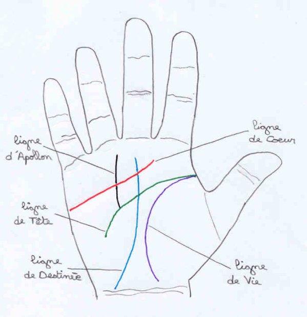 Mes lignes de la main sleeve27 - Symbole de la vie ...