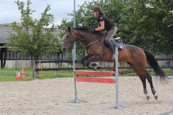 """"""" Monter à cheval, c'est être entre ciel et terre à une hauteur qui n'existe pas """""""