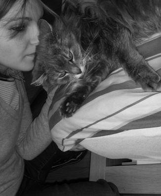 *...Le chat ...*