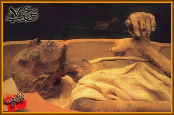 """إسلام """"موريس بوكاي"""" بسبب جثة فرعون مصر"""