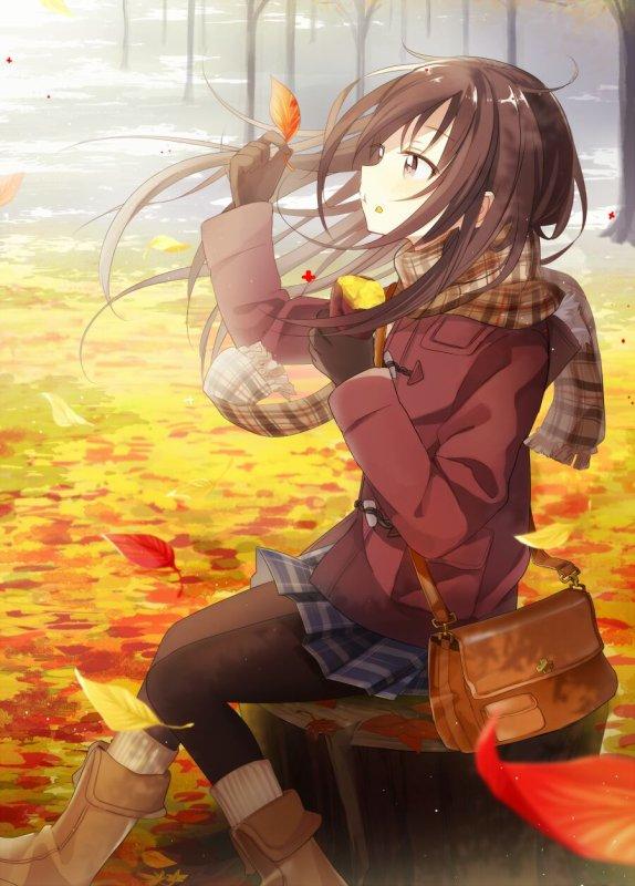 L'automne c'est presque fini !!!