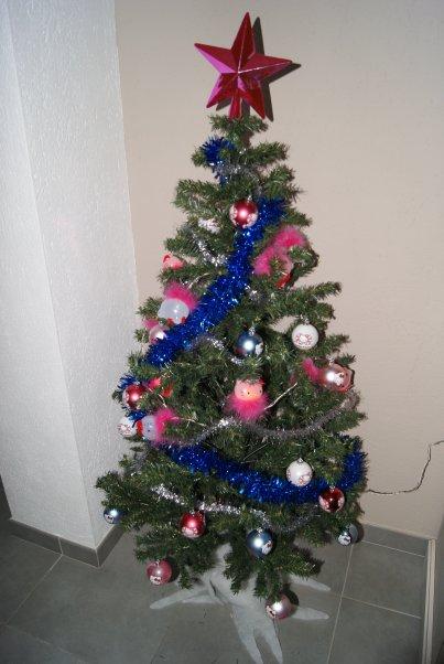 Notre sapin de Noël et la petite maison lumineuse