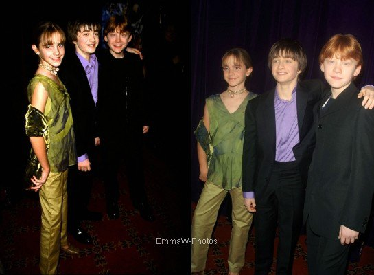 2001 (Premieres/Events) : Harry Potter and the Philosopher's Stone NYC Premiere