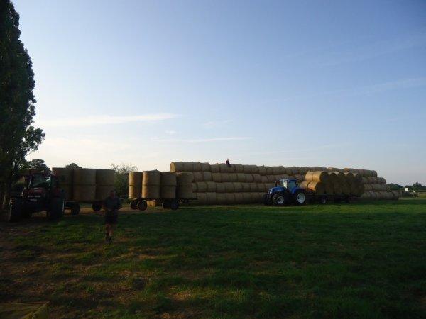 Paille 2013 , et voilà le résultat après quelques déplacements et beaucoup de kilométres, 50 hectares de paille c'est ca !