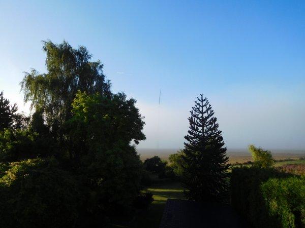 Vue du Jardin avec Eolienne dans le brouillard .