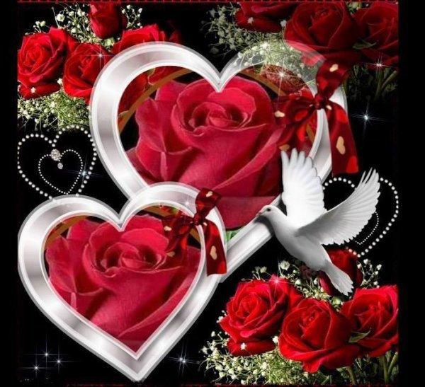 Bonne ST valentin a tout les amoureux penez si vous aimez bon dimanche