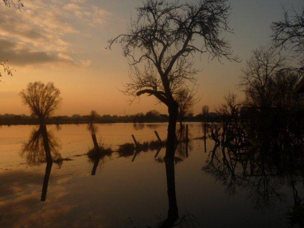Nouvelle proposition pour notre concours photos de printemps : Wez-Macquart sous les eaux.