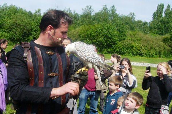 3èmes Médiévales de Salomé : une grande attraction, la chasse au faucon et autres oiseaux de proie. Pour les besoins de la démonstration, monsieur le maire de Salomé a bien voulu se prêter au jeu