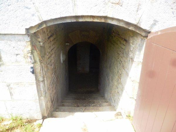 La motte castrale de Saint-Omer