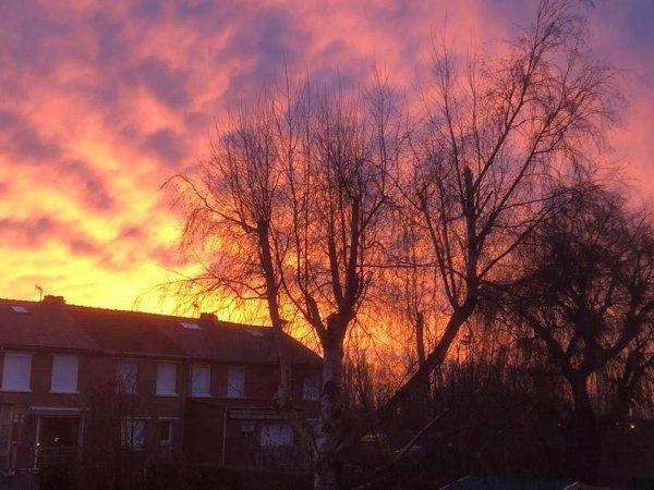 Lever de soleil hivernal dans le pays de Weppes