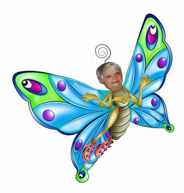 ho ho le jolie papillon bleu