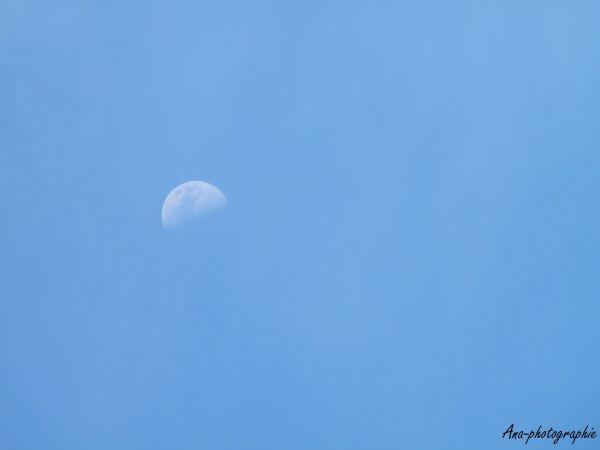 Lune en plein jour.
