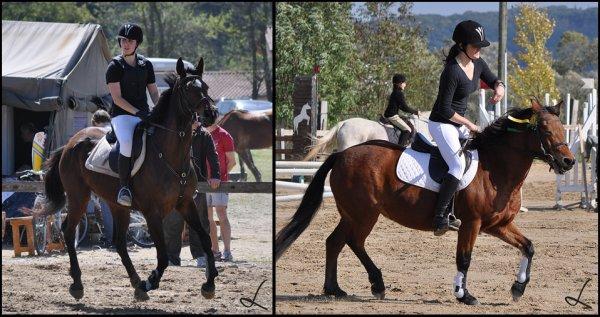 """"""" Votre cheval vous ressemble, comme votre reflet dans un miroir.."""""""