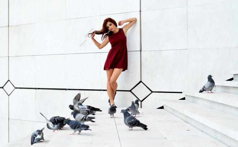 Et tu t'envoleras toi aussi, comme ses oiseaux non loin de toi.