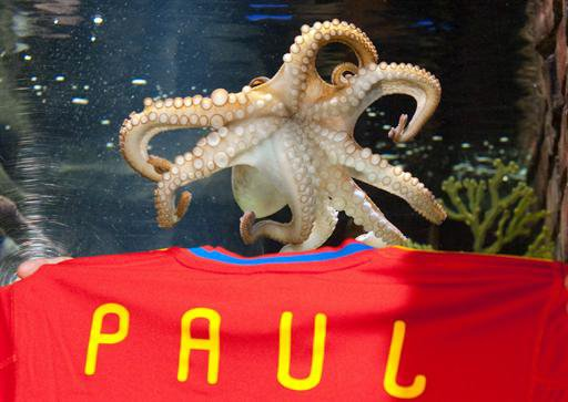 Who killed Paul the Octopus ?