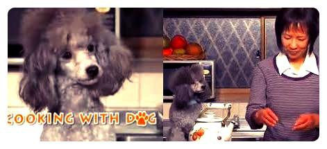 Hi I'm Francis, the host of this show ...Cooking with dog !