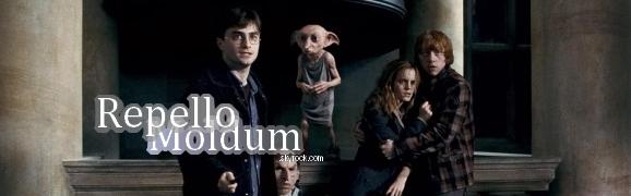 Harry Potter, plus que des livres et des films, un UNIVERS!