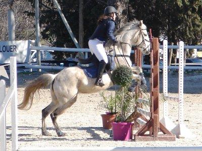 concours st georges equitation (E2)
