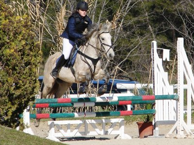 concours st georges equitation (E2)
