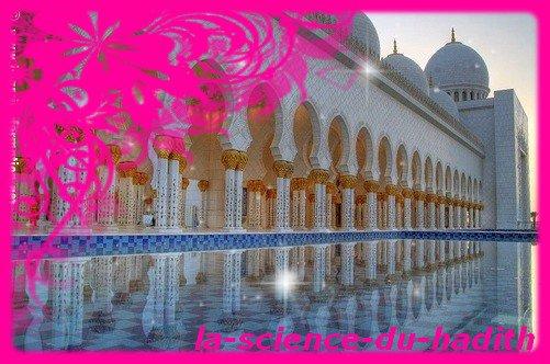 .●✿●.Que veut dire Ahlu Sunna wa'al Jama'a ?.●✿●.