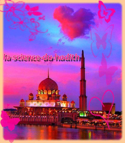 .●✿● Allâh a crée Adam à Son image .●✿●