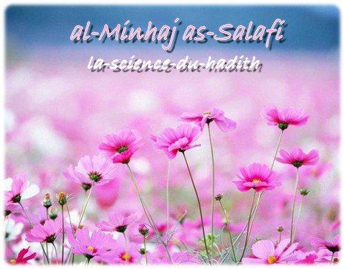 .●✿●. al-Minhaj as-Salafi .●✿●.