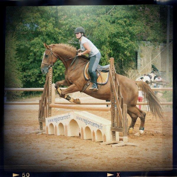 Balance ton coeur devant l'obstacle, ton cheval le ratrapera...