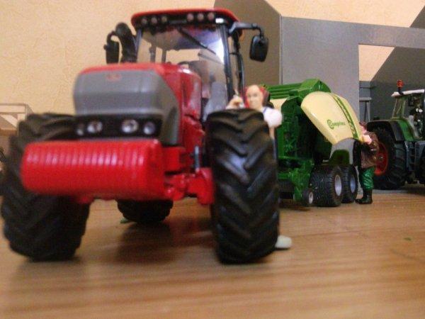 bientôt des photo de mais miniature agricole