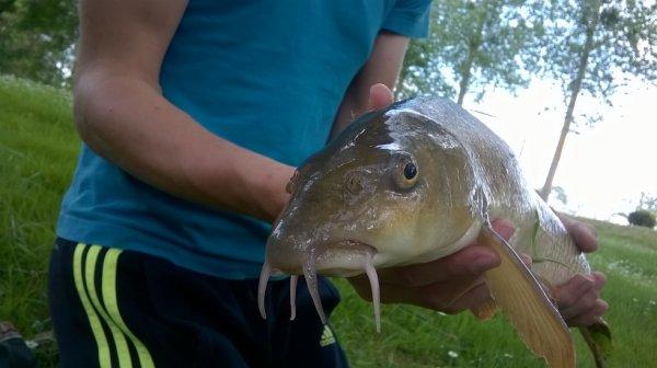 p'tite pêche ;)