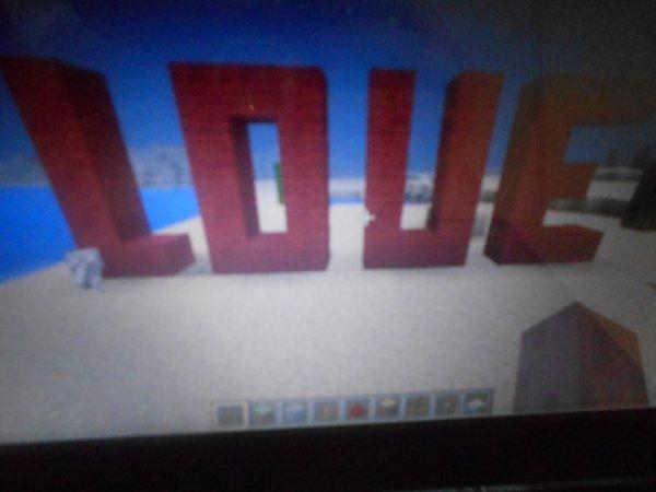 Même dans minecraft l'amour existe