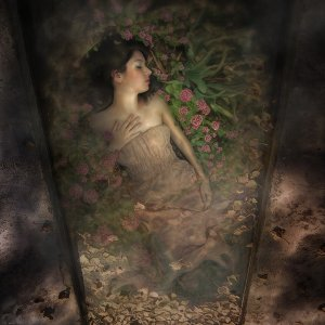 Besoin de rêver~~~~~~~~~~~~ Parole chanson    : Pascal Obispo