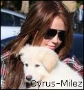 Photo de Cyrus-Milez