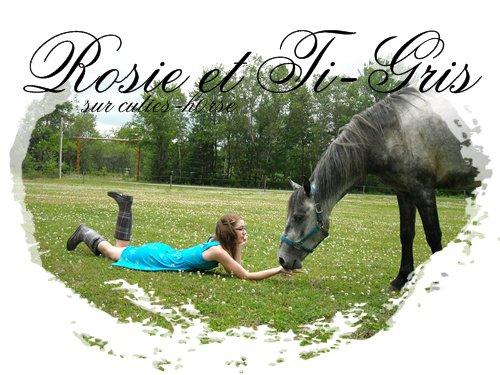 Il était une fois, une cow girl et son cheval ...