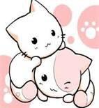 J'adore aussi les chatons hihihihi