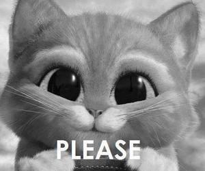 ✿ S'il te plait !