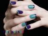 Violet et bleu vert