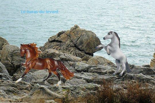 Palazio et Orelsan sur roche de Bretagne