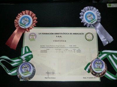 certificados del regional  FOA + medallas mios y de mi hijo