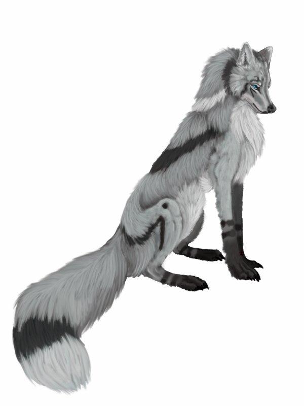 """OC Flore: """"Attention, même les chiens fidèles peuvent mordre"""""""